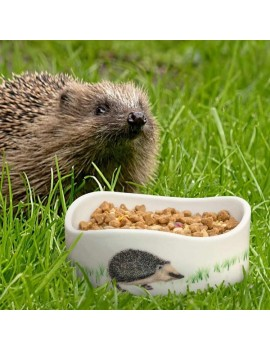CJ Wildlife Hedgehog Gift Pack