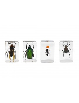 Learning Resources Jumbo Bug Jars