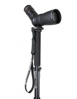 Celestron Hummingbird Monopod Home Grovers Optics