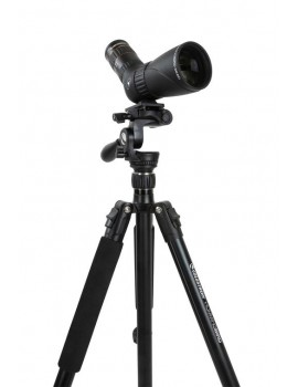 Celestron Hummingbird Fast Action Head Tripod Home Grovers