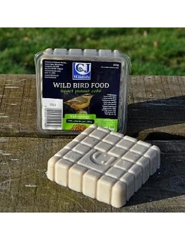 CJ Wildlife Peanut Cake Square With Insects