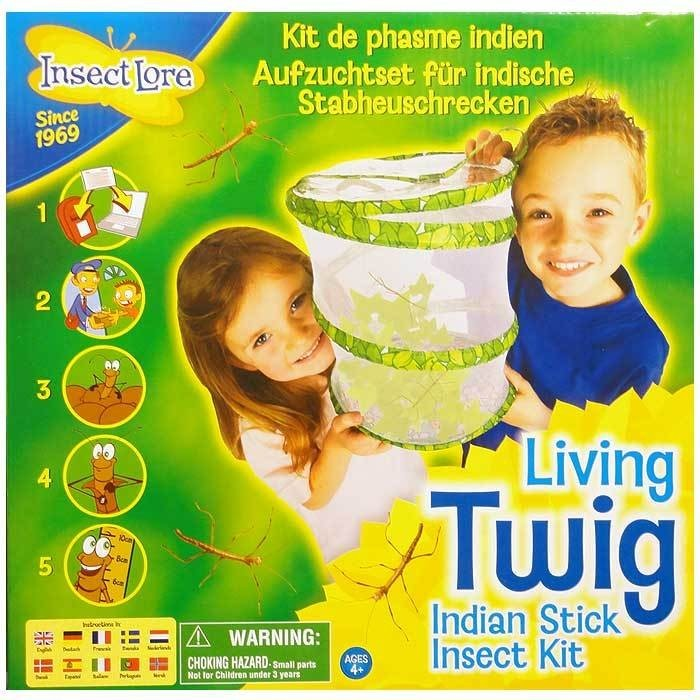 Living Twig Kit Garden Wildlife & Biology